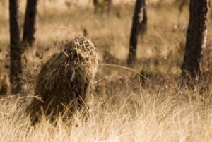 Ghillie suits help the wearer blend into the environment by incorporating local materials.